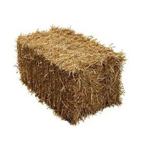 Straw & Hay Square Bales