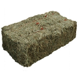 Hay-2nd Cut