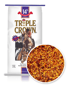 Triple Crown 14% Performance Horse Feed-50 lbs