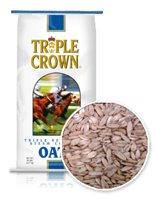 Triple Crown Horse Steam Crimped Oats-50 lbs