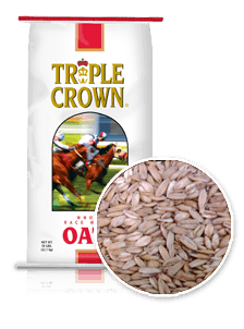 Triple Crown Whole Race Horse Feed Oats-50 lbs