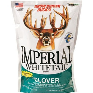 Imperial Whitetail™ Perennial Clover