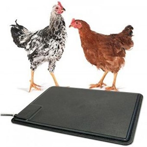 K&H Thermo-Chicken™ Heated Chicken Pad