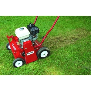 lawn thatcher 5 HP