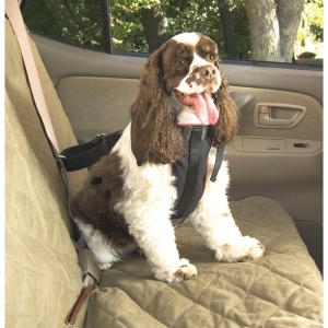 Vehicle Safety Harness Medium