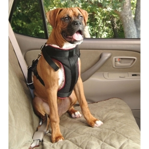 Vehicle Safety Harness large