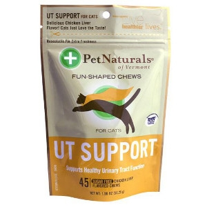 Cat UT Support Treats