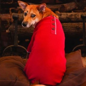 Ethical Products Inc Warm & Toasty Pj's Red