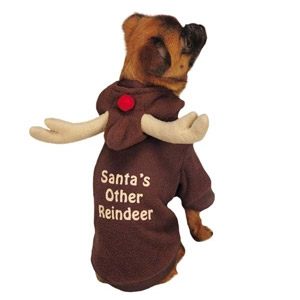 PetEdge Santa's Other Reindeer Hoodie- XXS