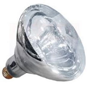 Infrared Clear Heat Lamp 250W