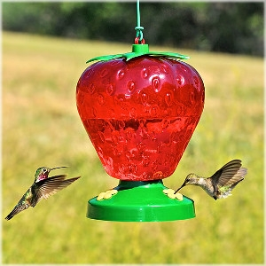 Perky Pet® Strawberry Plastic Hummingbird Feeder