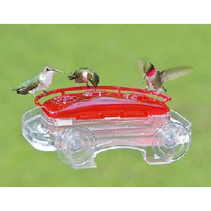 Jewel Box Window Humming bird Feeder