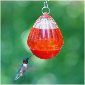 Perky Pet® Round Glass Hummingbird Feeder