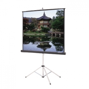 Projection Screen 44