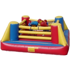 Bouncy Boxing Inflatable