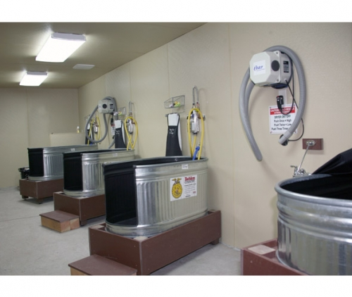 Dog Wash Stations