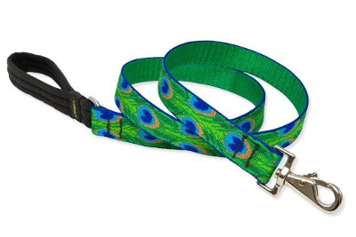 Lupine Dog Leashes & Collars