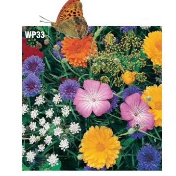 Blooming Plantables Butterfly Garden Seed Mat