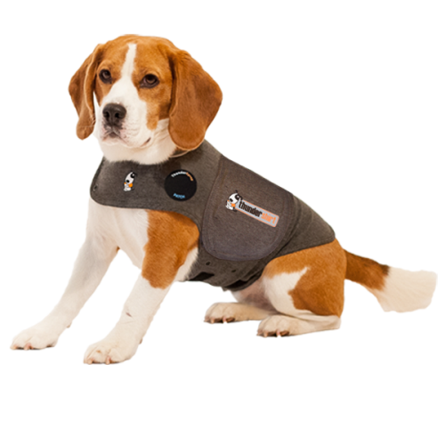 XXL Heather Grey Thundershirt