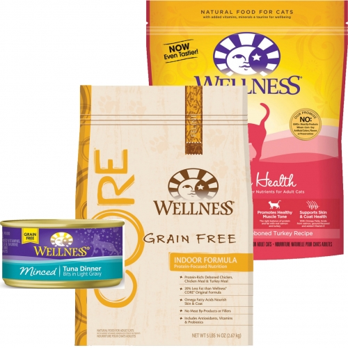 Wellness Cat Food