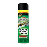 Spectracide 20 oz. Wasp/Hornet Killer