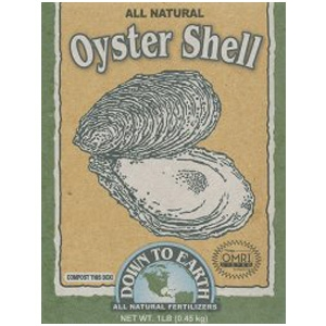 Down to Earth Oyster Shell Mini