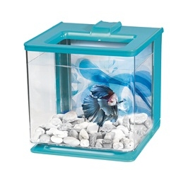 Marina Betta EZ Care Aquarium Kit - Blue