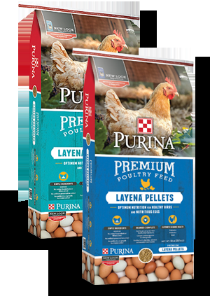 Purina Layena® Chicken Feed