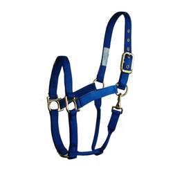 Value Horse Halter with Throat Snap