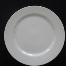 "White Contemporary : 11"" Dinner plate"