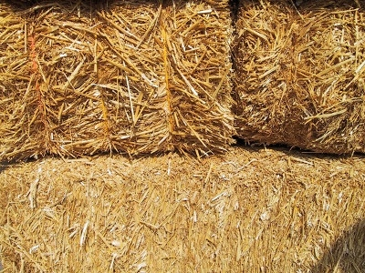Locally Grown Hay by the Knisely's