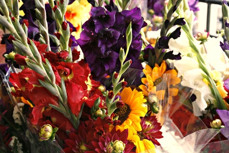 Cut Flowers from Local Farmers