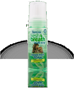 Fresh Breath Instant Fresh Mint Foam