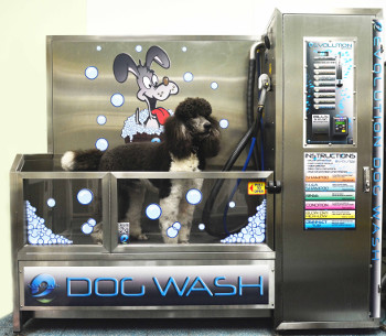 Brookling Dog Wash