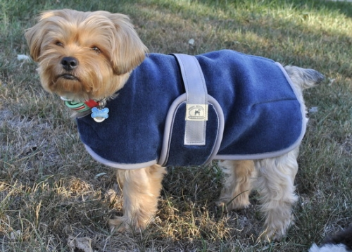 Foggy Mountain Snuggler Dog Coat