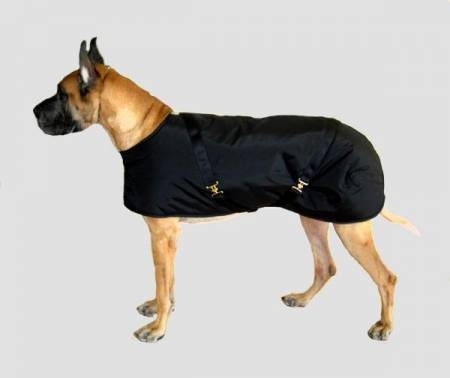 Foggy Mountain Nylon Turnout Dog Coat