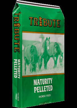 Tribute Seniority Pelleted Horse Feed