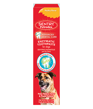 SENTRY Petrodex Enzymatic Dog Toothpaste