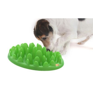 Green Mini Interactive Feeder for Dogs