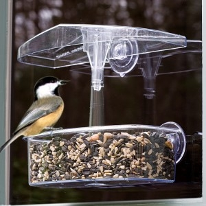 Droll Yankees Observer Window Feeder