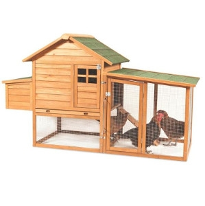Peak Roof Chicken Coop w/ 2 Nesting Boxes