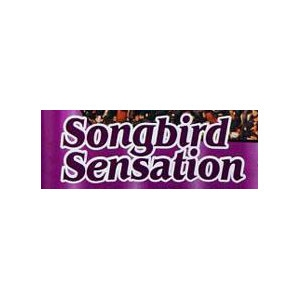 Birds Luv'Em Songbird Sensation Bird Seed 40lb