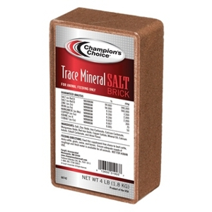 Champions Choice Trace Mineral Brick 4 lb
