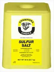 Sulfur Salt Block 50#