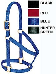 Basic Non-Adjustable Halter Average Horse - Assorted Colors