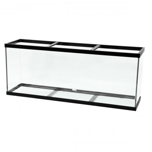 Aqueon® 150 Gallon Black Trim Aquarium