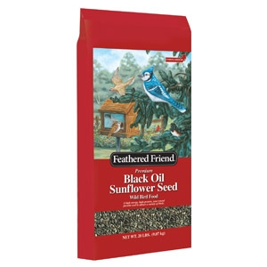 Feathered Friend® Black Oil Sunflower Wild Bird Seed