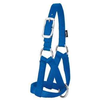 Nylon Goat Halter - Medium - Blue