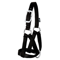 Nylon Goat Halter - Medium - Black