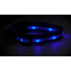 Mace Brand Night Beams Pet Collar- Blue